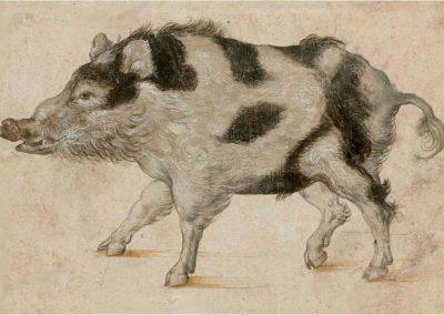 Lucas Cranach El Viejo 073