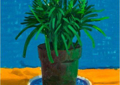 David Hockney 077