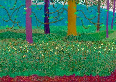 David Hockney 093