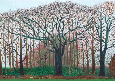 David Hockney 097