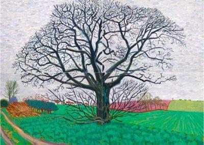 David Hockney 098
