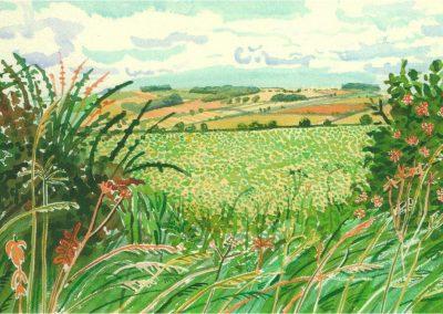 David Hockney 101