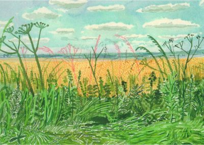 David Hockney 102