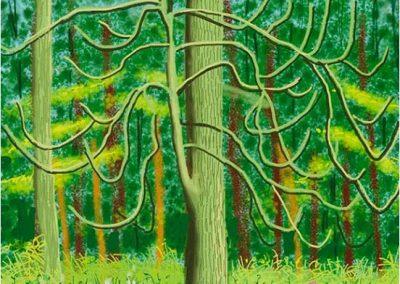 David Hockney 103
