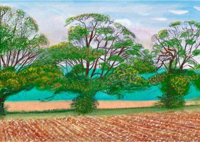 David Hockney 109