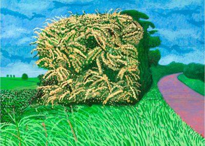 David Hockney 111