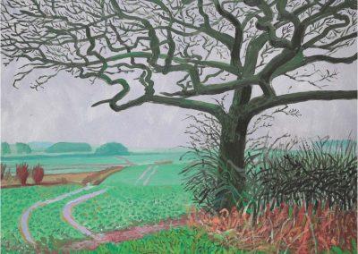 David Hockney 112