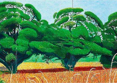 David Hockney 114