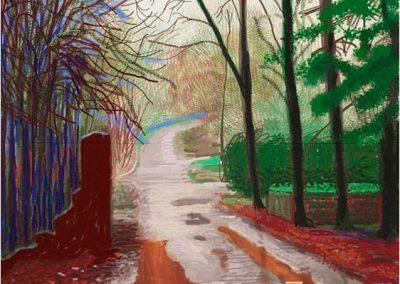 David Hockney 119