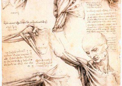 Leonardo da Vinci 060