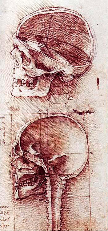 Leonardo da Vinci 062