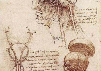 Leonardo da Vinci 063