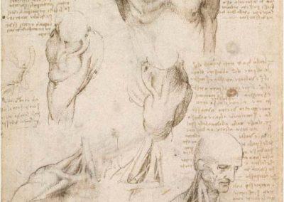 Leonardo da Vinci 064