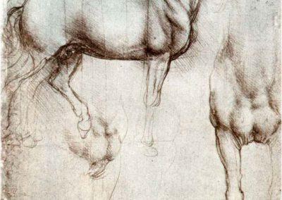 Leonardo da Vinci 075