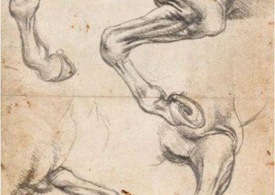 Leonardo da Vinci 076