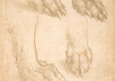 Leonardo da Vinci 078