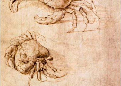 Leonardo da Vinci 080