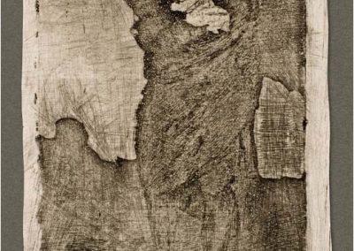 Goya - Caprichos 265