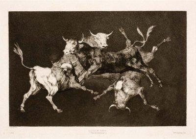 Goya - Disparates 293