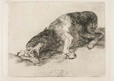 Goya - Los desastres de la guerra 377